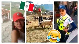 🇲🇽 HUMOR VIRAL MEXICANO 🇲🇽  LOS MEJORES VIDEOS DE RISA  😂 #14