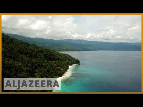 🌏 Race to save the rainforests in Asia-Pacific | Al Jazeera English