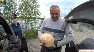 Прогулка первые грибы и конечно рыбалка на окуня