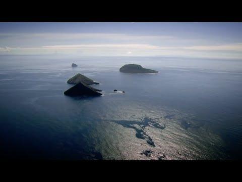 2050 - A Documentary