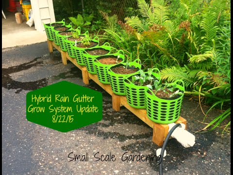 Gutter planters how to build a rain gutter garden for Rain gutter planter box