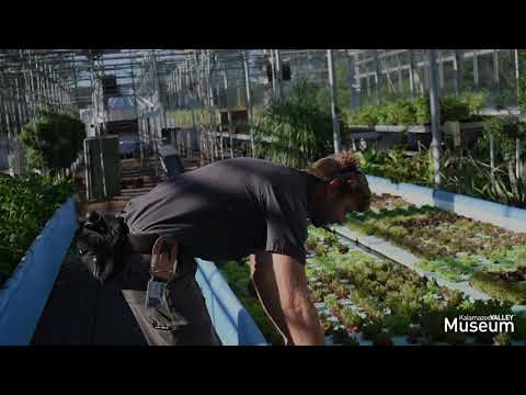 Hydroponics and Aquaponics at Kalamazoo Valley Community College's Food Innovation Center