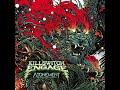 Killswitch Engage - Unleashed (Lyric animation)