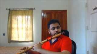 Chaha Hai Tujhko  -  Mann  -  Flute(Bansuri) Cover