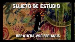 VIDEO: MIL VECES UNO - LUIS RUEDA