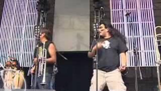 Presentación - Panteón Rococó en el Festival Vive Latino 2008 - La Dosis Perfecta