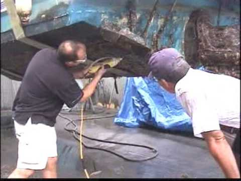 Fibreglass Hull Cleaning