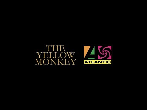 THE YELLOW MONKEY × ATLANTIC JAPANteaser