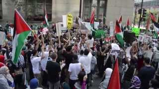 Thousands of Chicago protesters demand an end to Israel