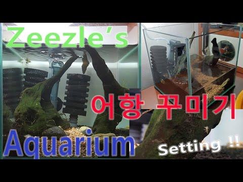 [지구] 수서곤충 어항꾸미기 (Aquarium Setting)