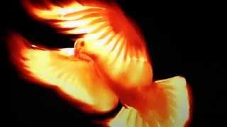 """Video THE ANOINTING OF GOD: FRESH FIRE PRAYER MINISTRY """" BAPTISM OF THE HOLY GHOST"""" """"FRESH FIRE"""" download MP3, 3GP, MP4, WEBM, AVI, FLV Desember 2017"""