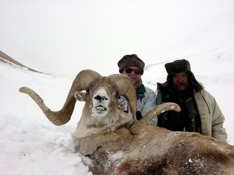TIAN SHAN MARCOPOLO KIRGHIZSTAN since 1990 Hunting (Chasse) by Seladang