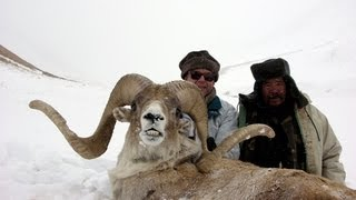 Video TIAN SHAN MARCOPOLO KIRGHIZSTAN since 1990 Hunting (Chasse) by Seladang download MP3, 3GP, MP4, WEBM, AVI, FLV Juni 2018