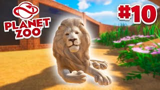 LION HABITAT! - Planet Zoo #10 w/ Vikkstar