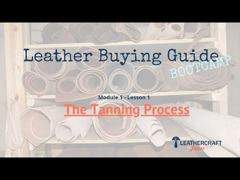 Leather Buying Guide - Module 1 Lesson 1  The Tanning Process