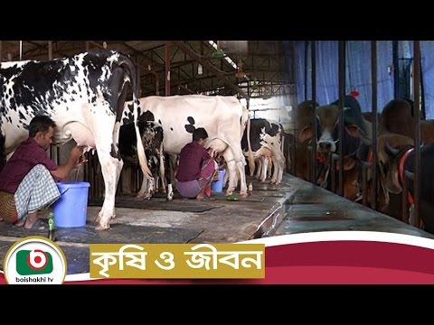 Krishi O Jibon | EP-37 | Dairy Farming | Agriculture Development Program