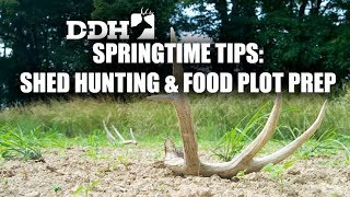 Springtime Tips for Shed Hunting and Food Plot Preparation