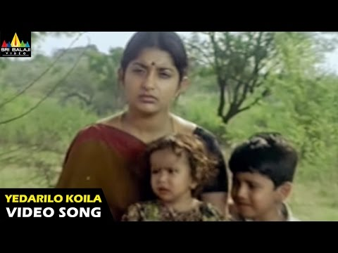 Gorintaku Songs | Yedarilo Koila Video Song | Rajasekhar, Aarti Agarwal | Sri Balaji Video