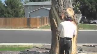 видео Изделия из древесины