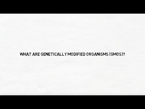 What Are Genetically Modified Organisms (GMOs)?