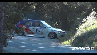 Vid�o Rallye du Cigalois 2015 [HD] (Show & Mistakes)