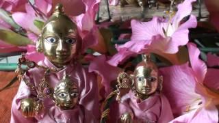 Krishna (Ladoo Gopal ) bhajan