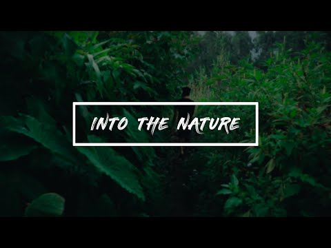 Into The Nature | Travel Video | Vattavada | Munnar