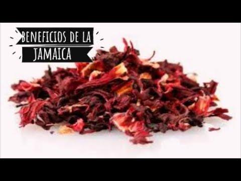 BENEFICIOS Y CONTRAINDICACIONES DEL AGUA DE LA FLOR DE JAMAICA /COCINA Y MAS CON ARMIDA