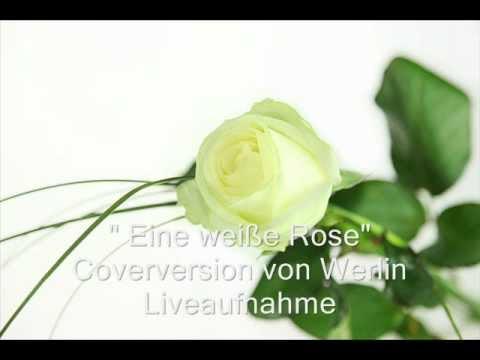 Eine weiße Rose - Kastelruther Spatzen - Coverversion von Werlin