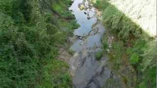 Quadri di Liguria: Dolcedo