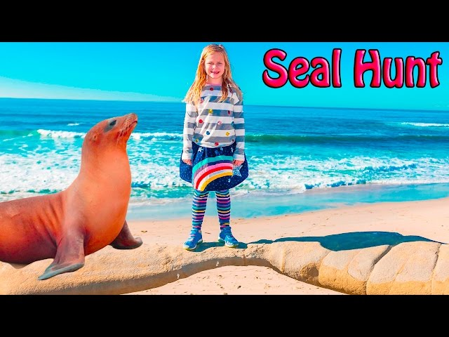 ASSISTANT Animal Hunt Surprise Seal Beach Hunt Video
