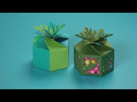 DIY Easy Tropical Party Favor Box | Sizzix