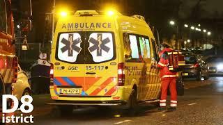 20180117 26 jarige man overleden na te water raken met auto Wateringseweg Delft D8