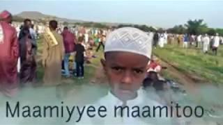 New Nashida Ahmad najashi fi ilma isa hamza 2020