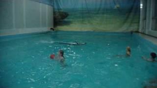 Плавание с дельфинами часть 3