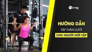 Hướng dẫn tập gym cho người mới tập
