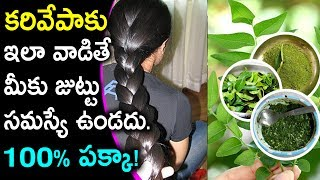 How to Stop Hair Loss with Curry Leaves | Fast Hair Growth Naturally | Remix King