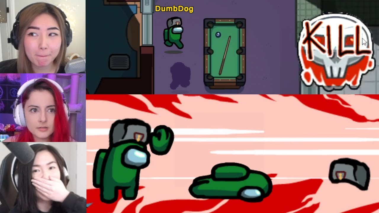 DumbDog's ONE IN A MILLION BAD LUCK!