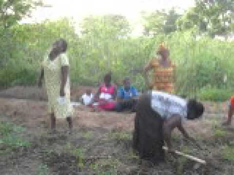 Talented Women's Club, Ghana. Now farming!