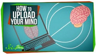 How To Upload Your Mind
