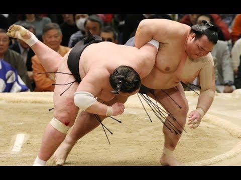 السومو في اليابان.. عودة إلى الطقوس القديمة  - نشر قبل 3 ساعة