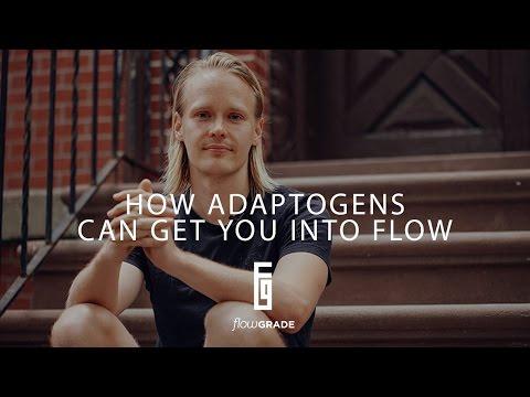 Flowgrade Show #21: Tero Isokauppila on how Adaptogens can get you into Flow