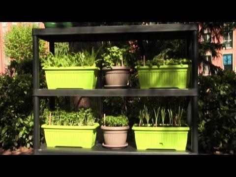 Piatti di plastica riciclati in orti per le materne for Vasche di plastica per tartarughe