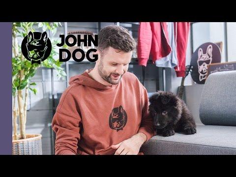 Jak oduczyć szczeniaka podgryzania dłoni - TRENING PSA - John Dog