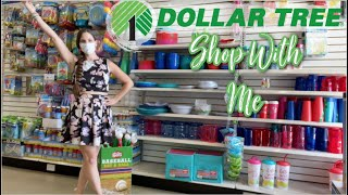 New At My Dollar Tree Summer 2021! Dollar Tree Shop With Me!  Ready For It!