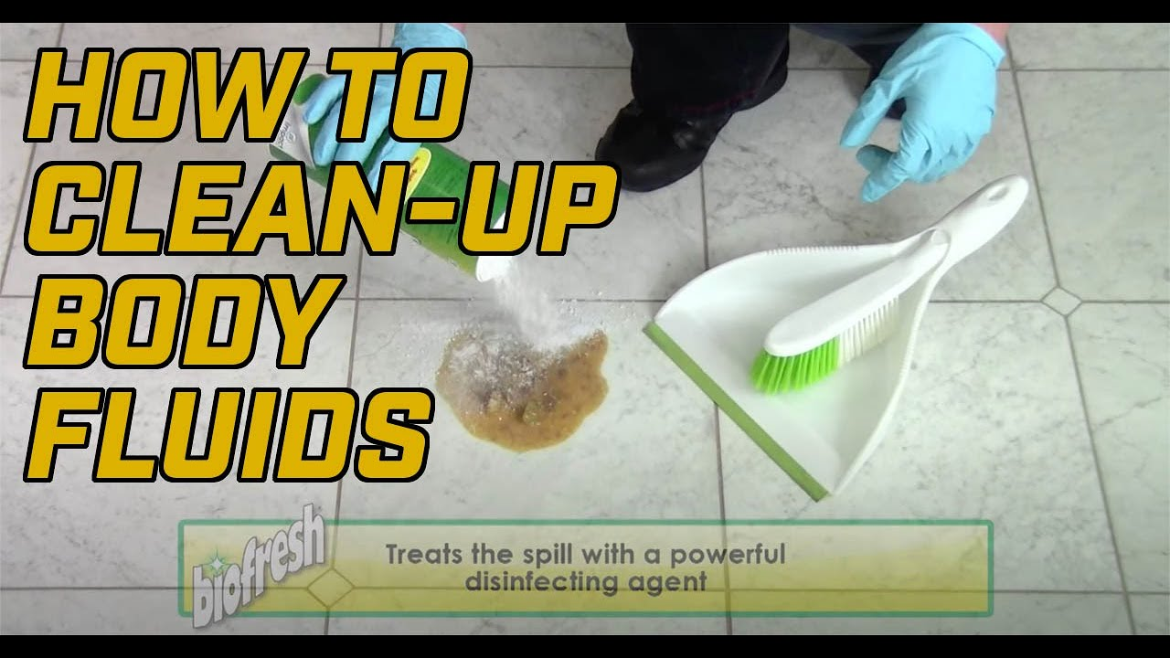 How to clean up sick from a carpet meze blog for How to clean vomit from floor