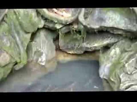 THANH MOVIE Suối cá thần Cẩm Thủy Thanh Hóa