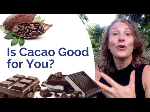 Is Cacao Healthy? Watch THIS before your next chocolate bite!