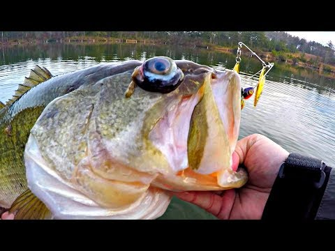 CRAZY FISH CATCH!! (MUTANT BASS)