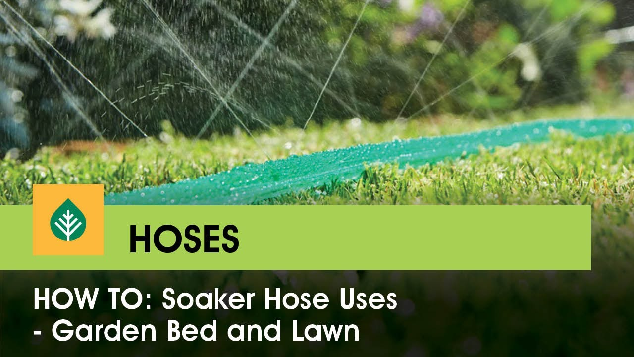 Soaker Hose Uses Garden Bed And Lawn